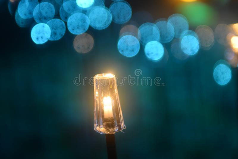 Decorative led fish light on the park law. Decorative led fish lights on the park lawn at night in holiday stock image