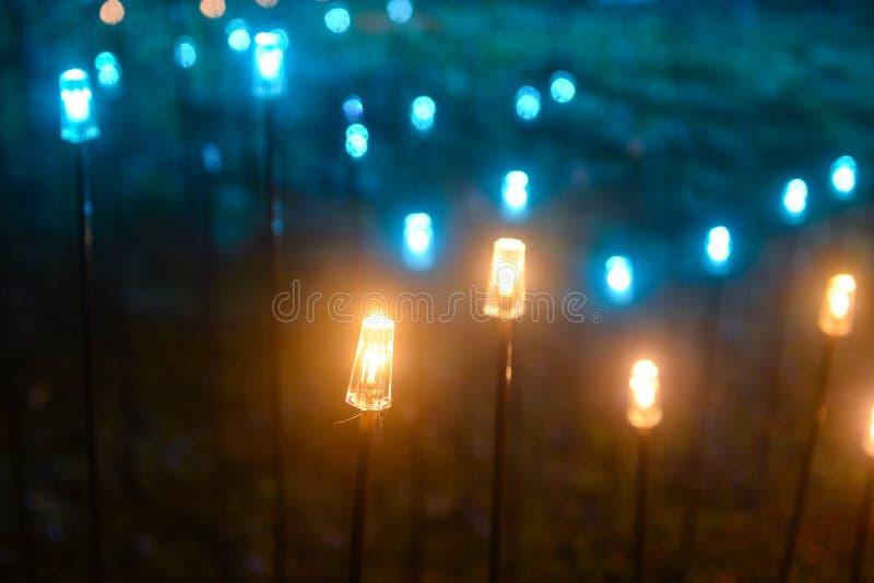 Decorative led fish light on the park law. Decorative led fish lights on the park lawn at night in holiday royalty free stock photo