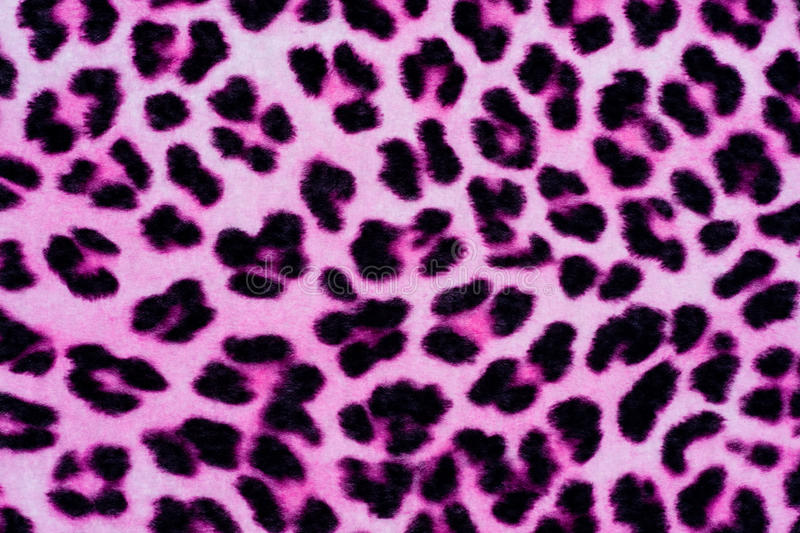 Decorative Leopard Fur Background royalty free stock photography