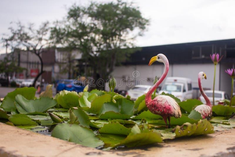 Decorative lotus pond royalty free stock image