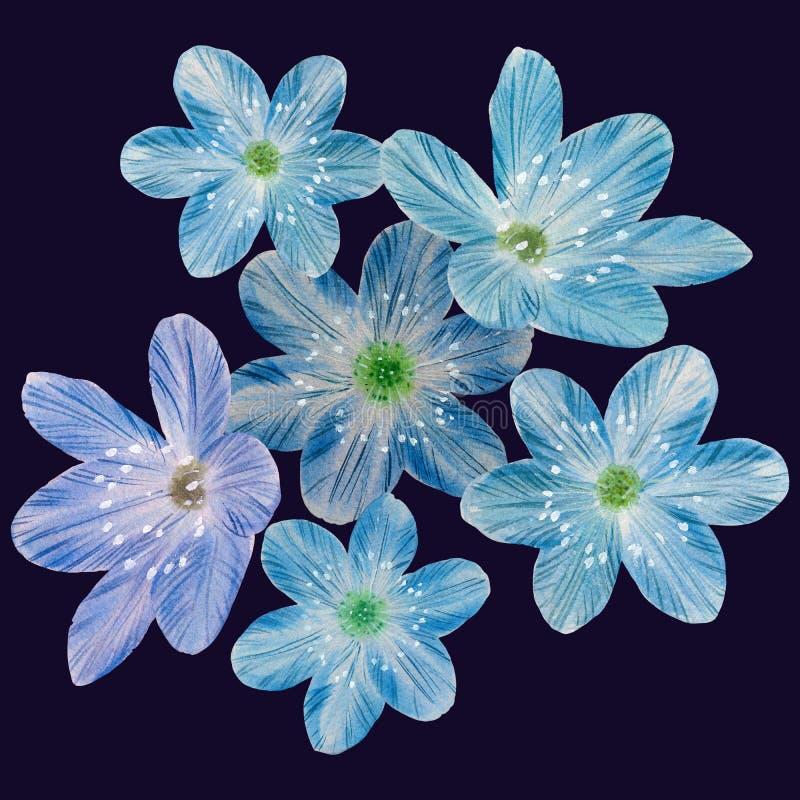 Seamless botanical pattern of blue flowers. stock photo
