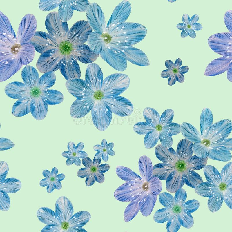 Seamless botanical pattern of blue flowers on a green background. royalty free stock image