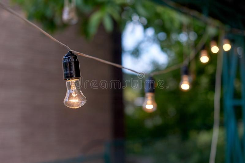 Decorative outdoor string lights hanging on tree in the garden in evening time.  royalty free stock photo