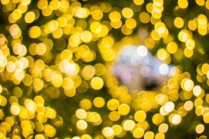 Decorative outdoor string lights hanging on tree in the garden at night time - decorative christmas lights royalty free stock image