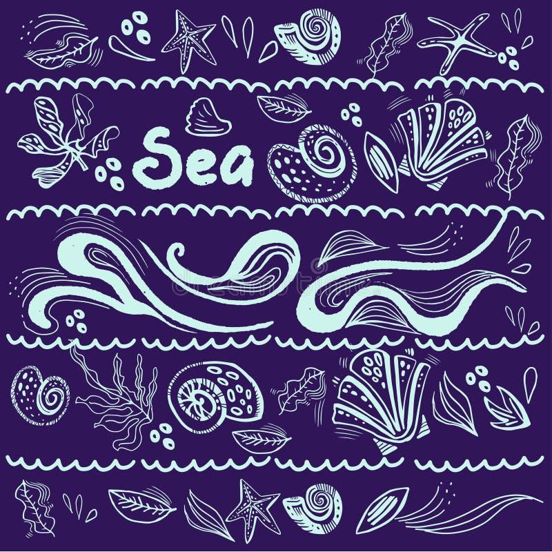 Sea with shells and algae stock photo