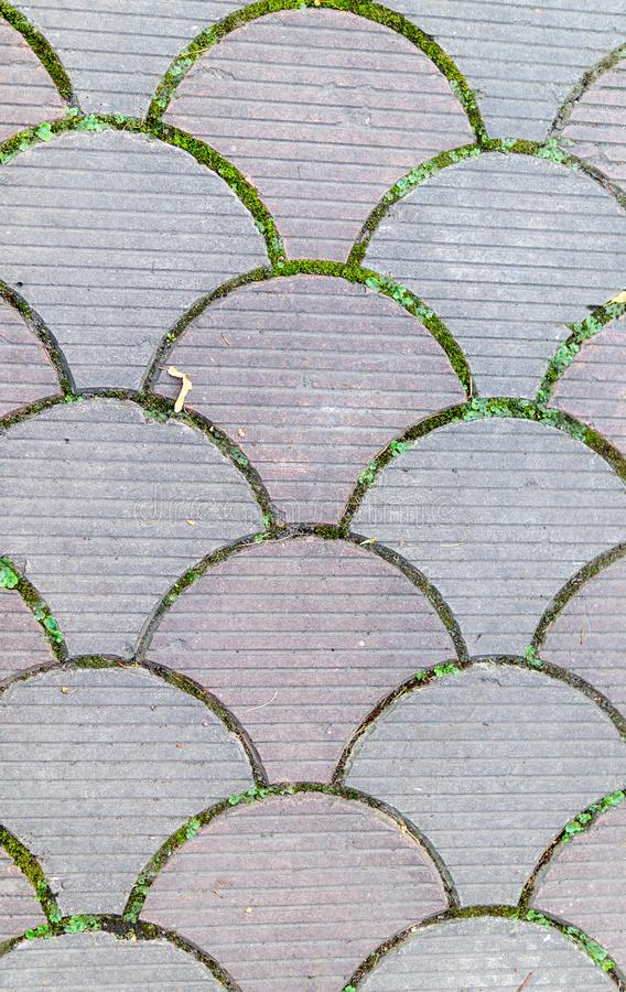Decorative paving tile. background, texture, pattern. royalty free stock images