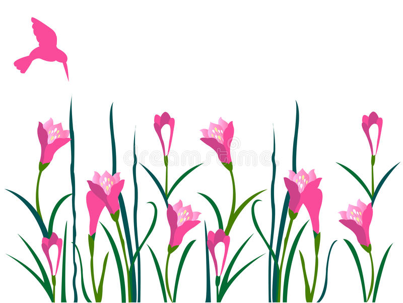 Decorative pink flowers and bird vector illustration