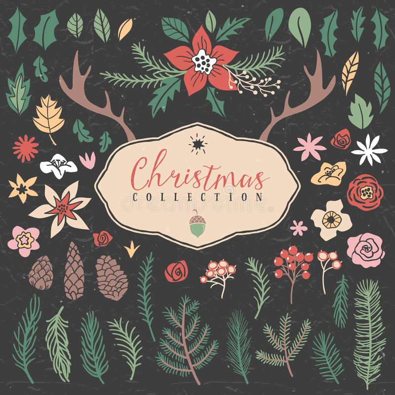 Decorative plant items. Christmas collection. royalty free illustration