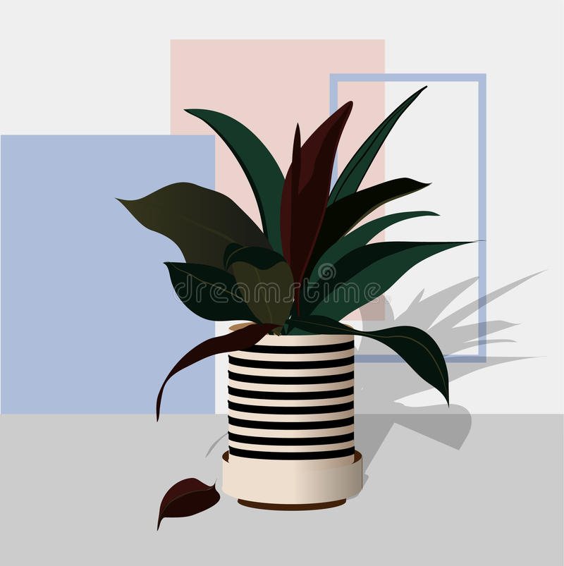 Decorative plants in pots of colorful colors stock illustration