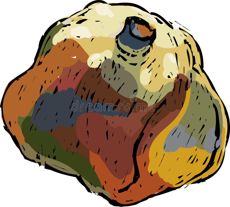 Decorative pomgranate. Sketch vector illustration of colourful avantgarde pomegranate vector illustration
