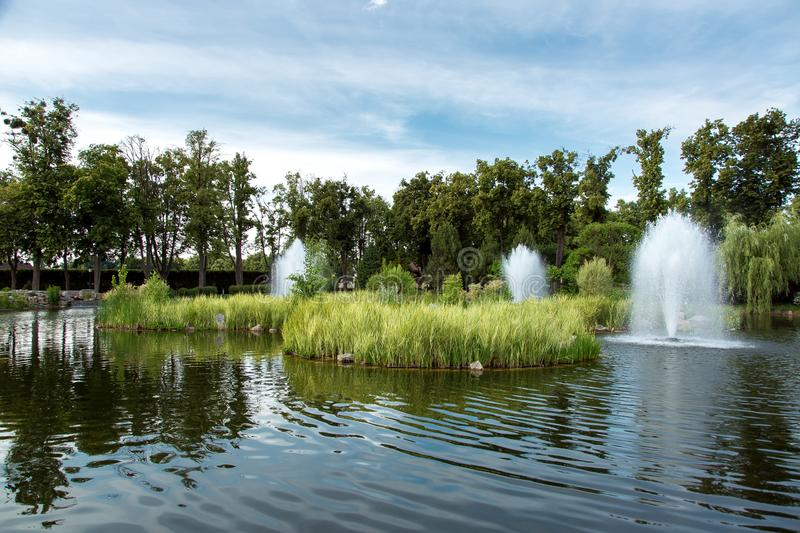 A decorative pond with small islands with reeds and fountains. A decorative pond with small islands with reeds and fountains in the middle of the lake in the royalty free stock photography