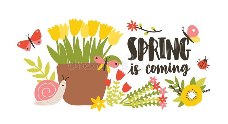 Decorative postcard template with Spring Is Coming phrase handwritten with cursive calligraphic font, blooming. Springtime garden flowers, cute snail and stock illustration