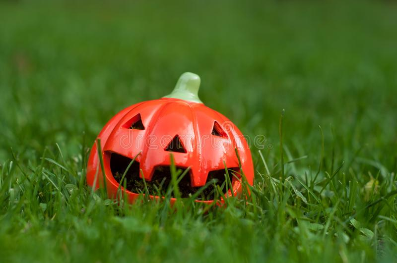 decorative pumpkin for halloween in the grass stock photo
