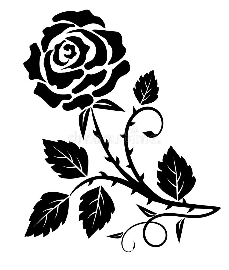 Decorative rose thorn. Decorative rose flower with thorns- vector illustration royalty free illustration