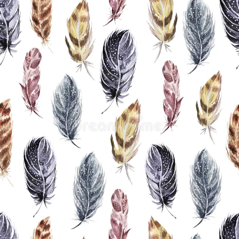 Decorative seamless pattern with feathers . Watercolor . vector illustration
