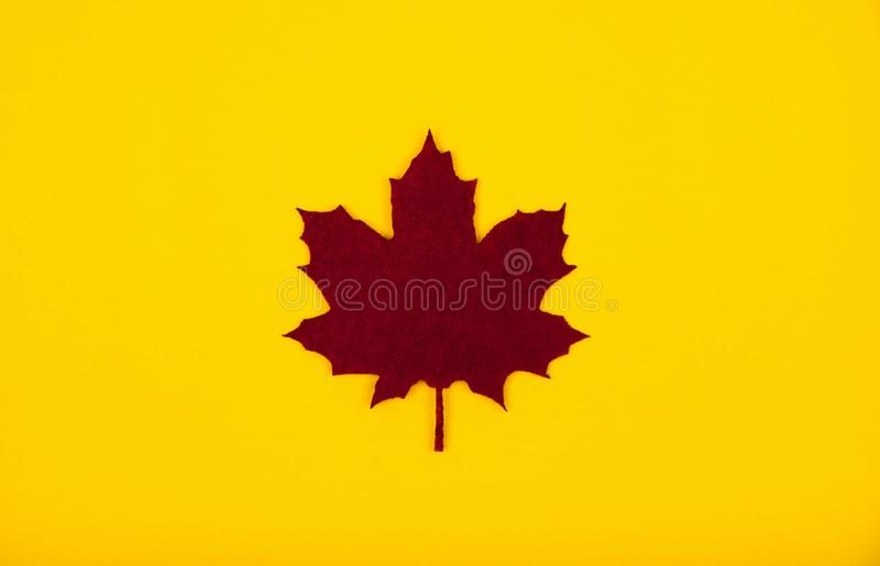 Decorative single dark red burgundy color felt maple leaf. Autumn trendy background. Place for text. royalty free stock photos