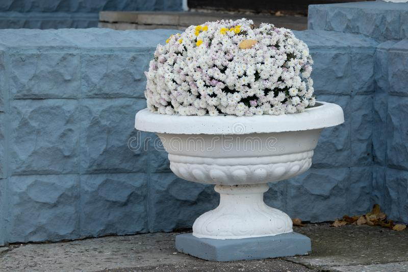 Decorative stone vase with flowers on a granite staircase close-up outdoors royalty free stock photos