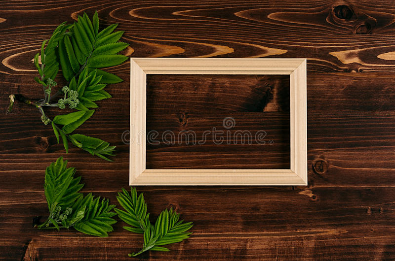 Decorative summer background of blank wood frame and young green leaves on vintage brown wooden board. royalty free stock image