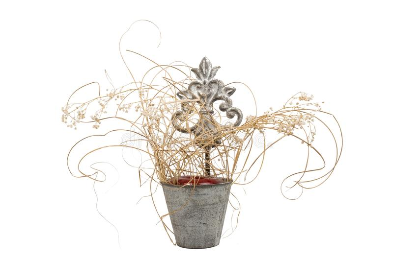 Decorative water pail. With dried plants on white background, isolated stock photography