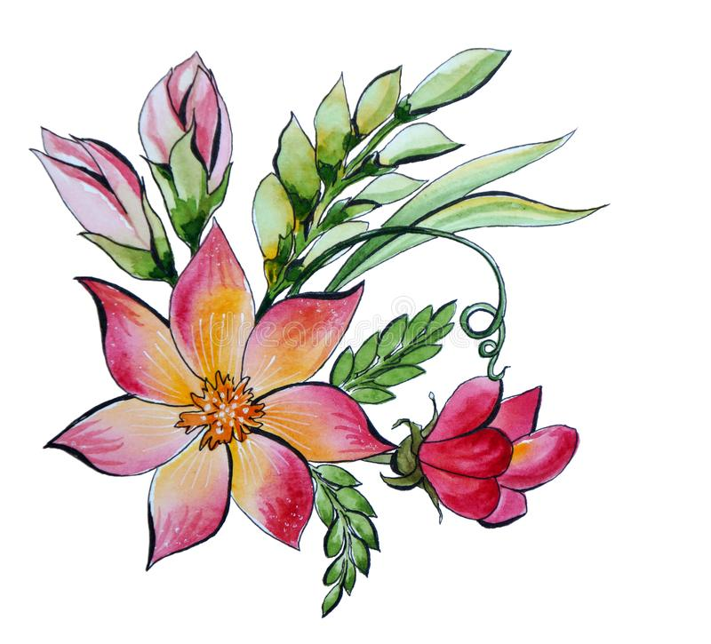 Decorative watercolor bouquet of flowers and herbs stock illustration