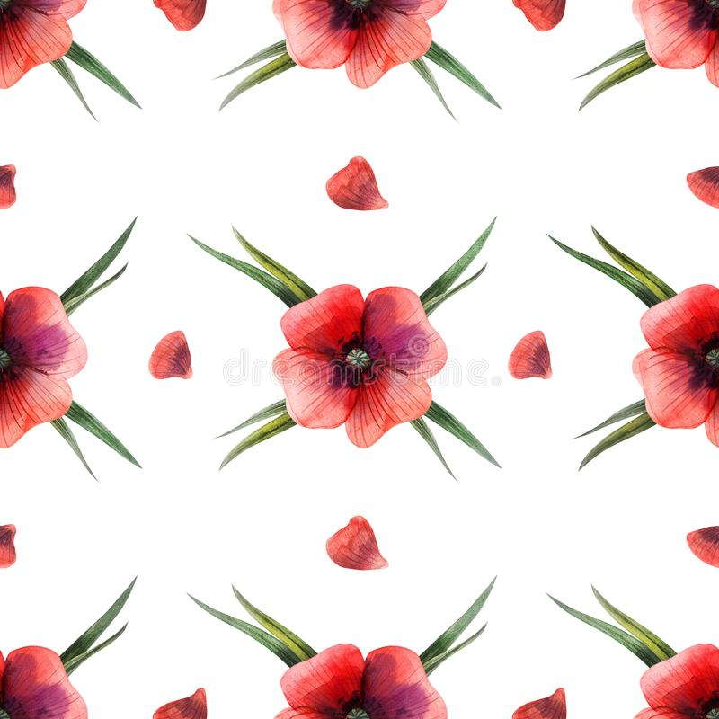 Watercolor seamless pattern grass and poppy flowers royalty free illustration