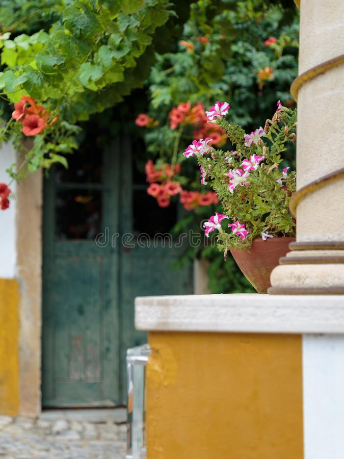 Decorative White and Pink Flowerpot and Antique Door in background stock photos