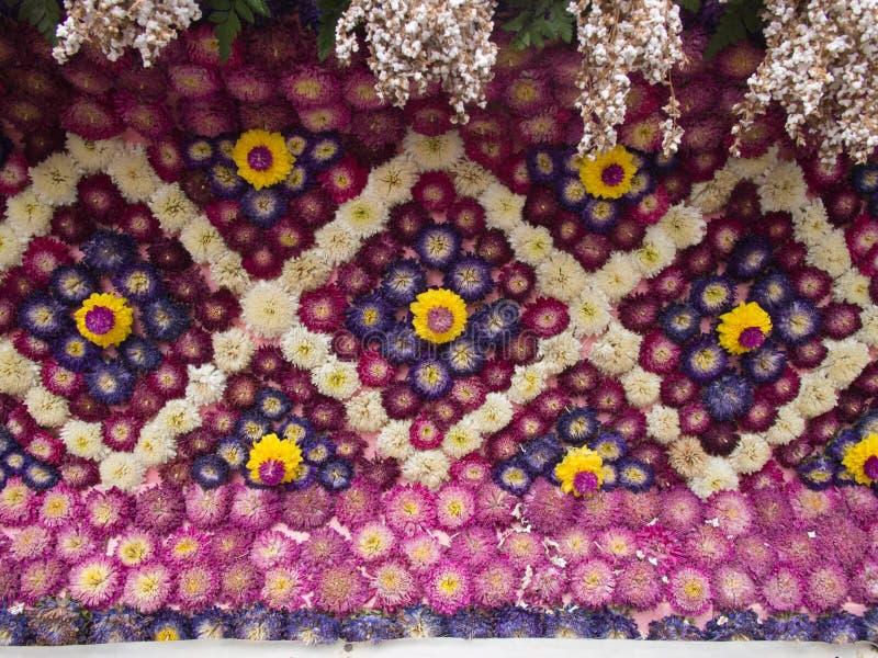 Decorato con l'amaranto porpora fotografia stock libera da diritti