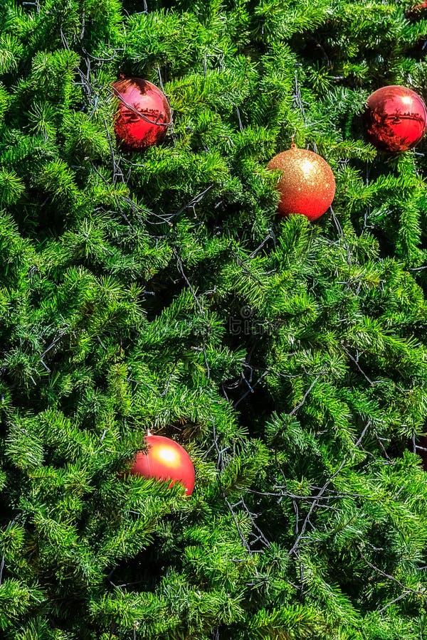Decorazione brillante della palla di Natale sull'albero di natale fotografie stock libere da diritti