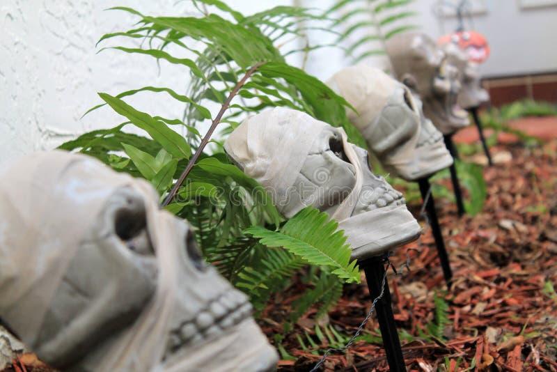 Decorazione dei crani di Halloween immagini stock