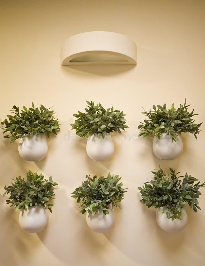 Decorazione dei fiori di parete fotografie stock
