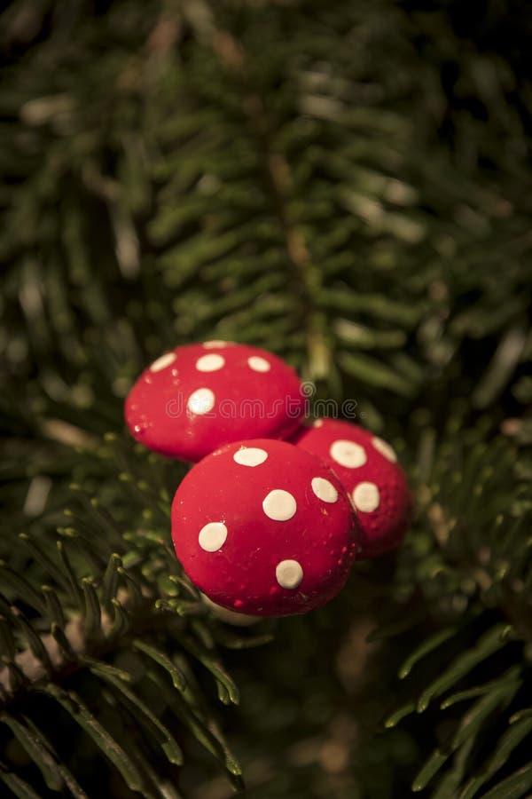 Decorazione del fungo sull'albero di Natale fotografia stock