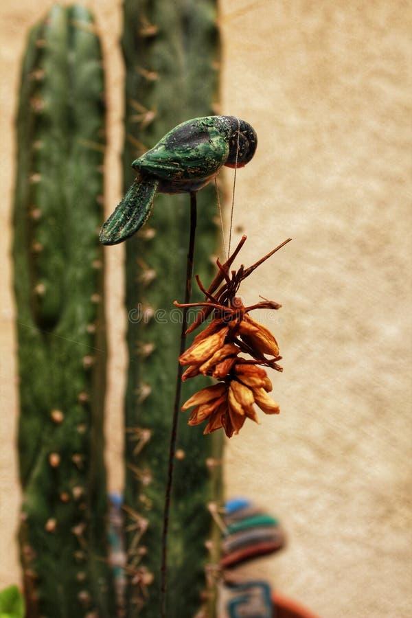 Decorazione del giardino con i fiori secchi fotografia stock