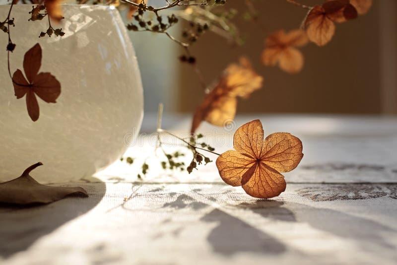Decorazione di autunno immagine stock libera da diritti