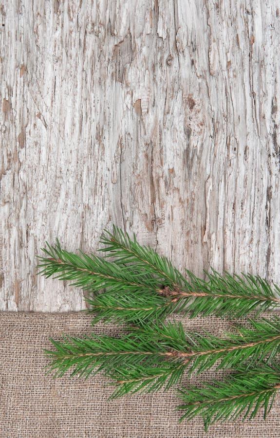 Decorazione di Natale con il ramo dell'abete e tela da imballaggio su vecchio legno fotografia stock