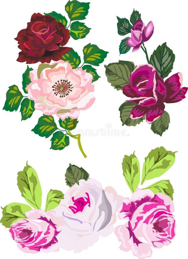 Decorazione di rosa isolata royalty illustrazione gratis