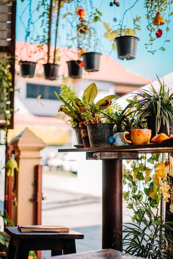 Decorazione di un ristorante in Chiang Mai Belle piante verdi dappertutto immagini stock libere da diritti