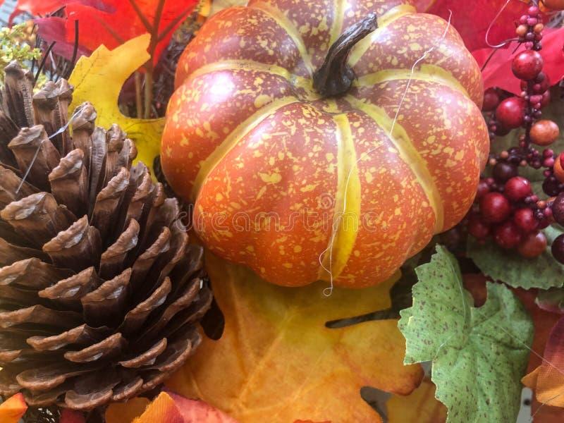 Decorazione di una zucca d'autunno, di un cono di pino, di un mirino e di un foglie fotografia stock libera da diritti