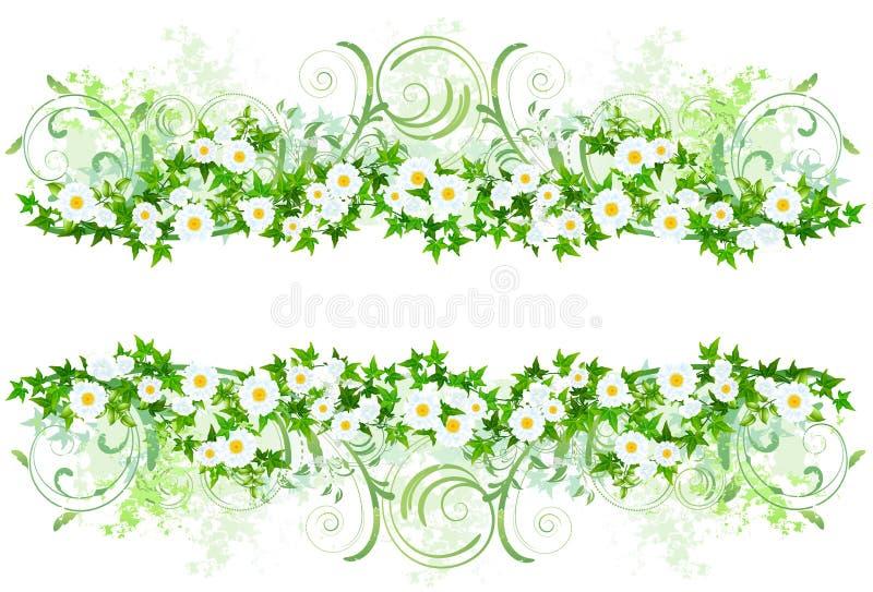 Decorazione floreale con le margherite bianche for Potatura margherite