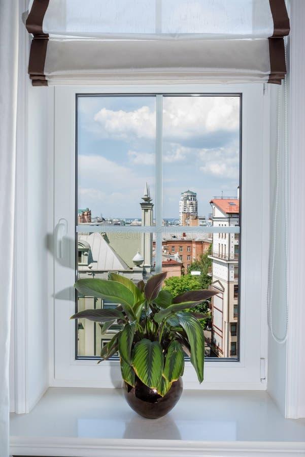 Decorazione interna della tenda in salone Davanzale della finestra con il vaso di fiore, vista della città immagini stock