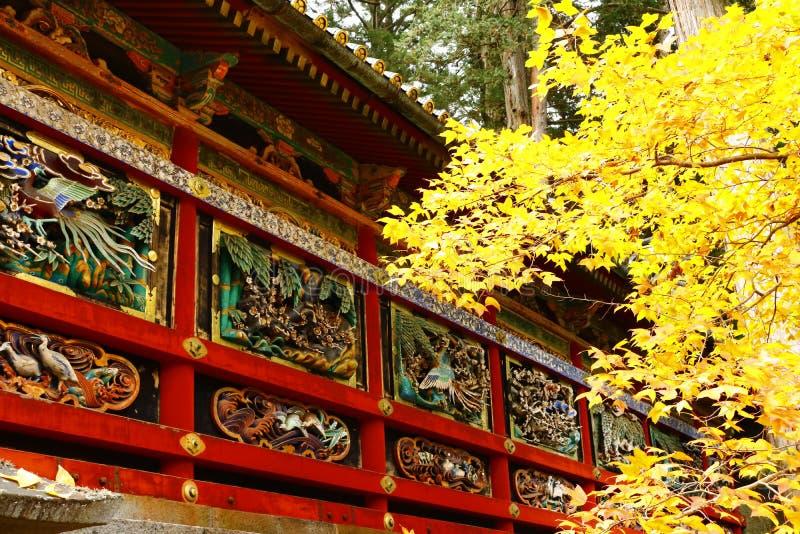 decorazione splendida del ` s di Tosho-Gu e fogliame dorato fotografia stock libera da diritti