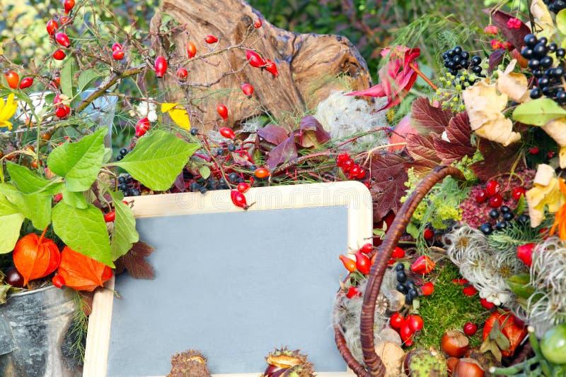 Decorazione variopinta di autunno con la lavagna immagine stock