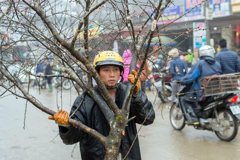 Decorazioni cinesi del nuovo anno nel Vietnam immagine stock