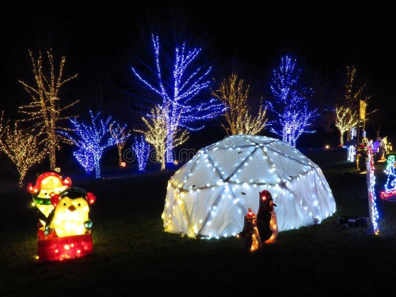 Decorazioni di Natale del polo nord nella notte fotografia stock libera da diritti