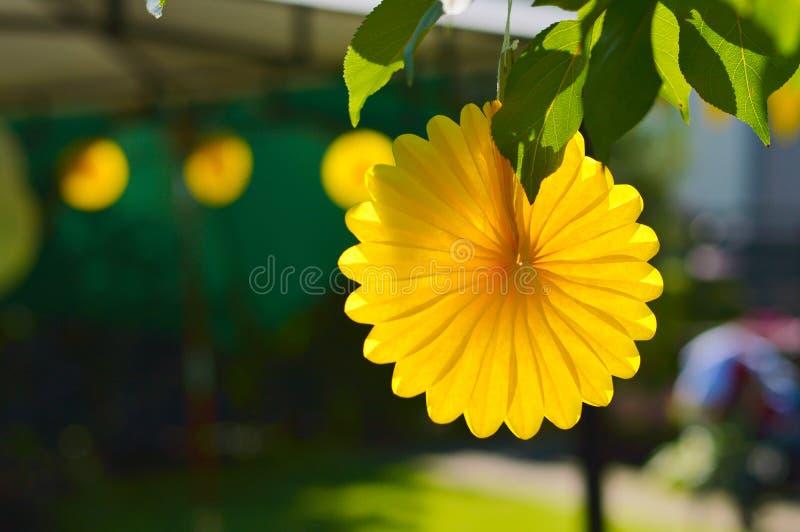 Decorazioni festive del ricevimento all'aperto giallo di estate fotografia stock libera da diritti