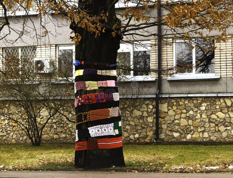 Decotation dell'albero facendo uso del tricottare nastro fotografia stock