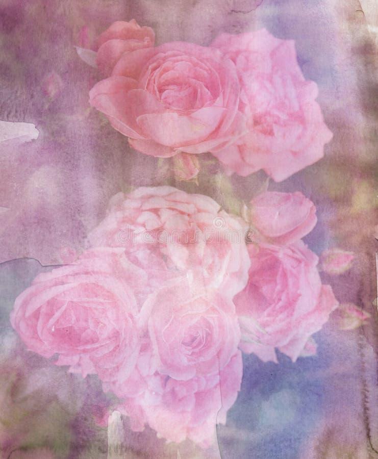 decoupage的葡萄酒玫瑰 图库摄影