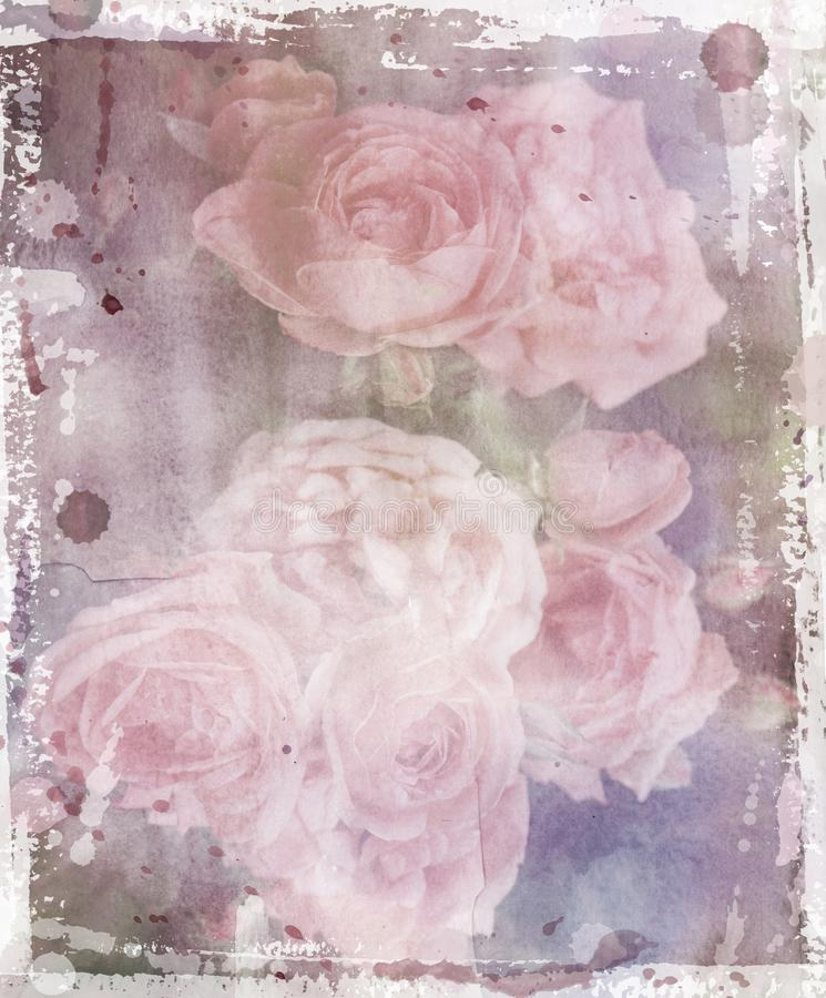 decoupage的葡萄酒玫瑰 免版税库存照片