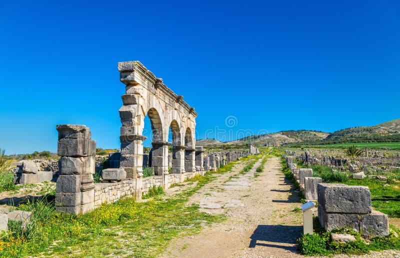Decumanus Maximus główna ulica Volubilis, antyczny Romański miasteczko w Maroko obraz royalty free
