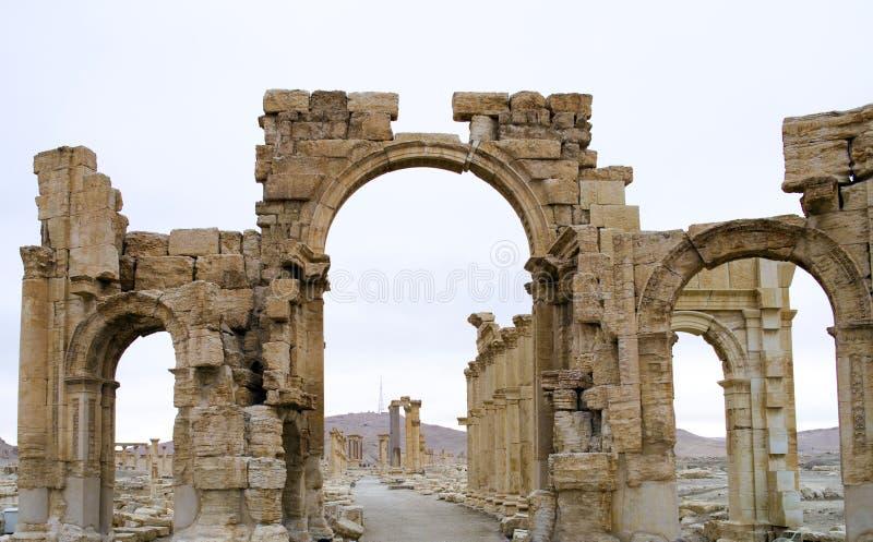 decumanuspalmyra syria royaltyfria foton