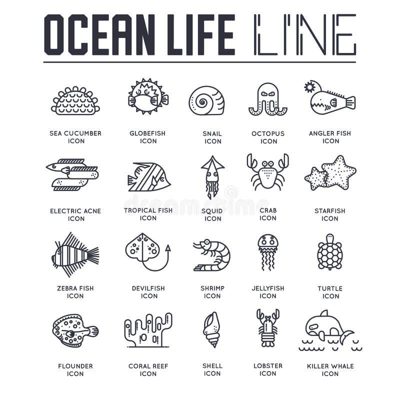Dedicado às linhas submarinas do folheto do vetor ajustadas Recife de corais no molde do oceano da linha fina Conceito do convite ilustração do vetor